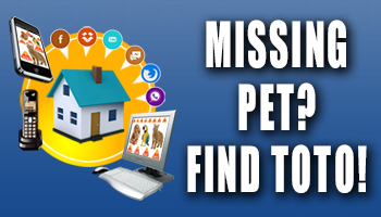 Find Toto-350x200 Banner Ad